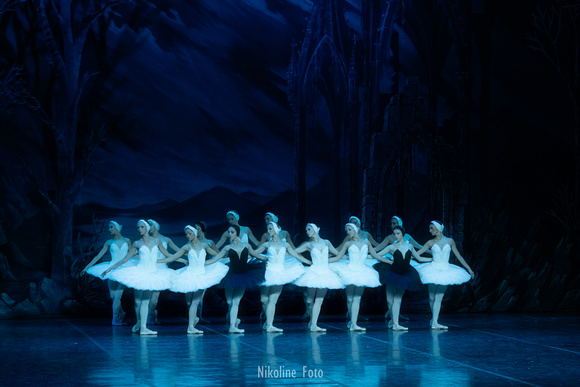 Swan Lake, act 3 with the Saint-Petersburg ballet theatre